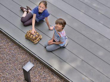WPC Terrassenbau Holzmichel