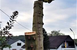 Garten und Landschaftsbau Holzmichel Baumfällung Kopie